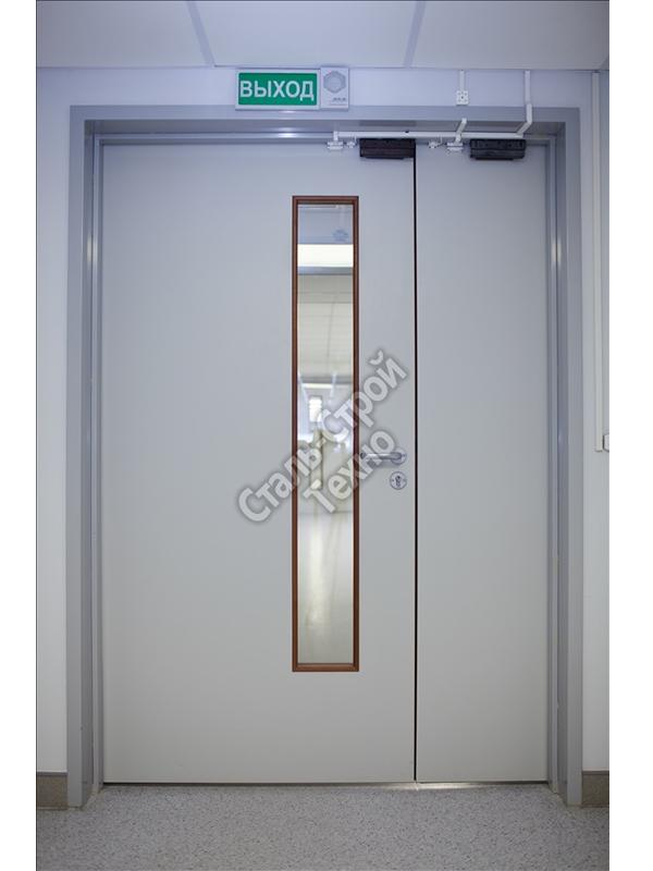 входные двухстворчатые двери с остеклением