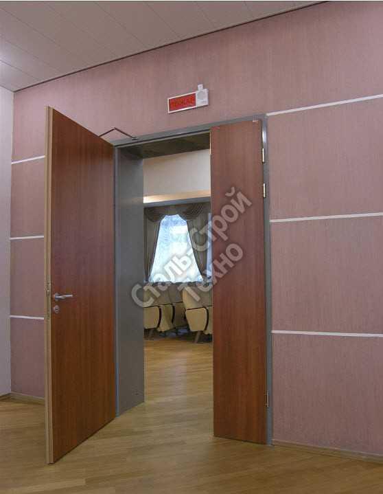 металлические двери для залов