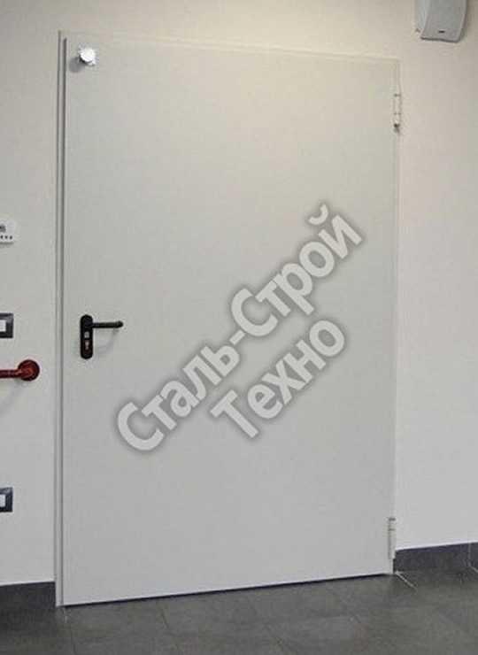 дверь металлическая для торговых центров